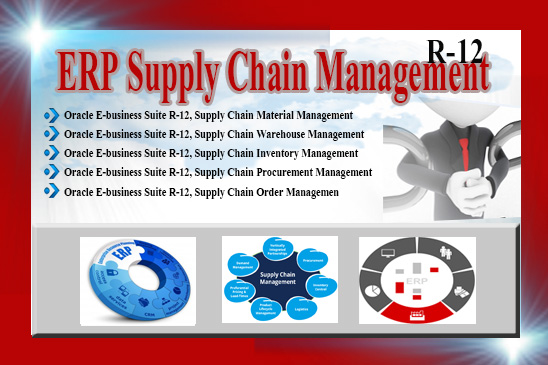 ERP Supply Chain Management