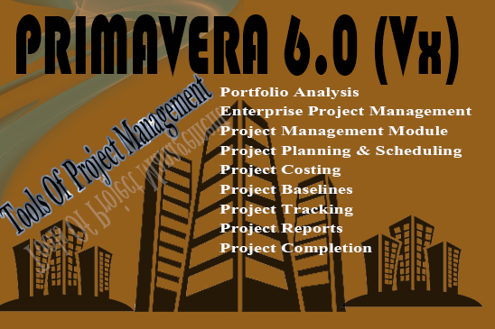 Primavera 6 Training with Project Management
